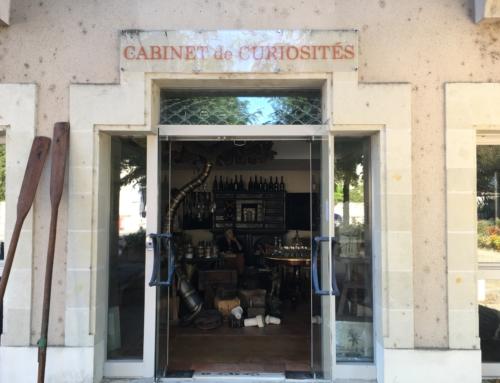 Enseignes peintes «Cabinet de Curiosités»